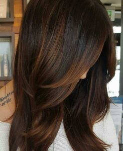 Best Salon for L'Oreal Hair Highlights in Mumbai Rs 125/Strip, Best Salon In Mumbai for Haircut Hairstyle Trendy Hair styles